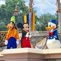 Goofy, Mickey & Donald