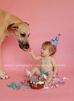 Be Inspired: Cake Smash » Confessions of a Prop Junkie » is this ever an adorable photo!.. Love it!..