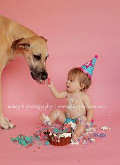 feed the dog cake smash