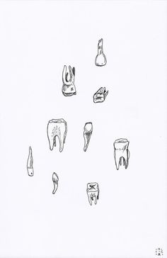 teeth drawing - black and white - tooth - line drawing - molars. $24,00, via Etsy.