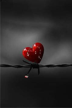 ~ ღ Skuwandi heart on barbed wire gothic romantic art photography