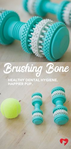 Bad oral hygiene in your pup can lead to dangerous health issues. Take steps to prevent these problems! The Brushing Bone is an easy way to help. This toy scrubs your pup's teeth while they play. *For every purchase, a toy is donated to a shelter dog in n