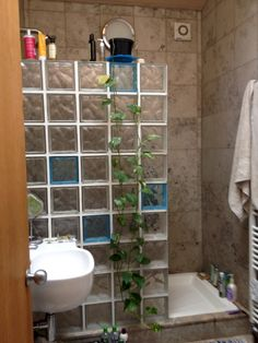 Amazing Glass Brick Shower Division Design Ideas - Page 31 of 41 - Farhah Decor Glass Block Shower, Showers Without Doors, Dream Shower, Glass Brick, Luxury Shower, Shower Screen, Shower Doors, Decoration, Design Ideas