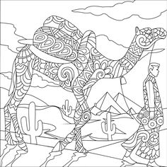 Coloring Books Pages Camel Colouring In Wilderness Pintura Animales Animals Vintage Quote