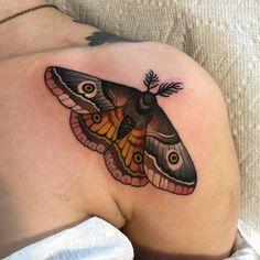 Traditional moth shoulder tattoo by matt adamson - My list of best tattoo models Nature Tattoos, Body Art Tattoos, Sleeve Tattoos, Tattoo Sleeves, Forearm Tattoos, Tattoo Ink, Pretty Tattoos, Beautiful Tattoos, Cool Tattoos