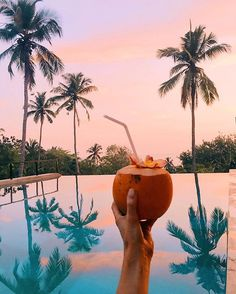 sunsets & coconuts are always a good idea... just add vodka #kadjuhouse @theasia.collective