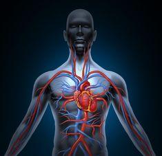 10 dolog, ami a rendszeres séta hatására történik a testünkkel