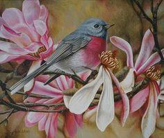 s_heidi willis_bird painting_rose robin_magnolias Bird Painting Acrylic, Watercolor Animals, Watercolor And Ink, Acrylic Art, Bird Artwork, Bird Paintings, Spring Art, Australian Artists, Wildlife Art