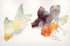 Goldfish -- watercolor feel to it is great Watercolor Fish, Watercolor Animals, Watercolor Paintings, Illustrations, Illustration Art, Fish Art, Aquariums, Painting & Drawing, Cool Art