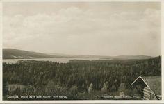 Utsikt över sjön Röjden mot Norge. Brukt 1944. Hartmans kortförlag, Arboga