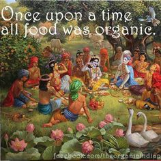 Amen! This is what so many in the older generation do not understand about the need to eat organic food. It's because their food was organic, just not labeled so.