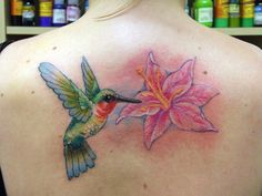 Classic hummingbird tattoo on back