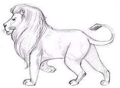 Löwe zeichnen - Schritt für Schritt-dekoking.com-5