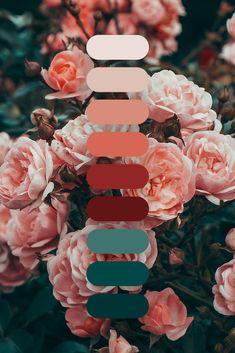 Color Schemes Colour Palettes, Colour Pallette, Wedding Color Schemes, Color Trends, Color Combos, Wedding Colors, Orange Color Schemes, Decoration Palette, Rose Background