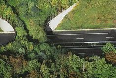 france_overpass for wildlife. Simple, attractive, eco-friendly, saves people from accidents, too!