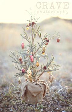 {Cute Tree}