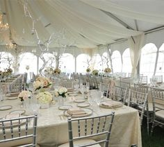 wedding reception decorating ideas | Wedding Reception Decorations - Designer Chair Covers To Go