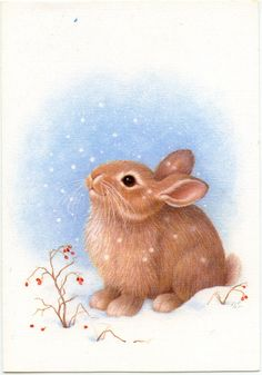 Bunny in Snow Bunny Art, Cute Bunny, Cute Animal Illustration, Illustration Art, Cute Drawings, Animal Drawings, Liberen A Willy, Alfabeto Animal, Bunny Painting