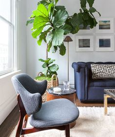 Blue Living Room   Patterns, prints, colors, and textures come together to create the ultimate livable space.