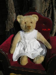 Beautiful Old German Teddy and a chair fit for a Queen!