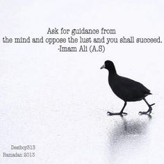 LOVEISLAM Hazrat Ali Sayings, Imam Ali Quotes, Quran Quotes, Islamic Love Quotes, Muslim Quotes, Religious Quotes, Motivational Leadership Quotes, Motivational Words, Inspirational Quotes Pictures