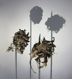 "Tim Noble and Sue Webster's ""Dark Stuff""- 189 mummified animals (67 field mice, 5 adult rats, 42 juvenile rats, 44 garden shrews, 1 fox, 1 squirrel, 1 weasel, 13 carrion crows, 7 jackdaws, 1 blackbird, 1 sparrow, 1 robin, 1 toad, 1 gecko, 3 garden snail shells), glue, metal stands, light projector"
