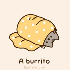I like burritos. It's just sad if u accidentally bite into one and found out that u accidentally bit off a cats head. (Of course it's sad)