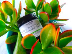 herbal tooth & gum powder.  removes plaque freshens breath strengthens enamel fluoride free
