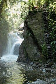 La provincia de Pichincha, además de albergar a la ciudad capital, está rodeada de bosque andino. Mindo es uno de los lugares más apetecidos por los turistas por los deportes extremos y paisajes inigualables.