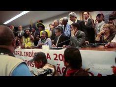 Manifestação de povos indígena na camara dos Deputados -16/04/2013
