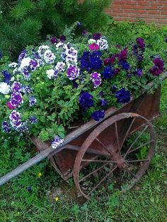Big old wagon filled with flowers