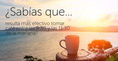 ¿Sabías que... resulta más efectivo tomar café entre las 9:30 y las 11:30 de la mañana?