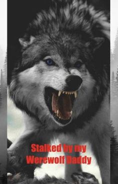 Wise Quotes, Quotable Quotes, Great Quotes, Inspirational Quotes, Wolf Qoutes, Lone Wolf Quotes, Wolf Spirit, Spirit Animal, Wolf Love
