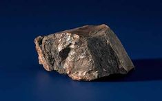 """'Moon rock' given to Holland by Neil Armstrong and Buzz Aldrin is fake * A moon rock given to the Dutch prime minister by Apollo 11 astronauts in 1969 has turned out to be a fake. * Curators at Amsterdam's Rijksmuseum, where the rock has attracted tens of thousands of visitors each year, discovered that the """"lunar rock"""", valued at £308,000, was in fact petrified wood."""