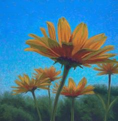 Daily Painting: Autumn Yellow Flowers against Clear Blue Sky, painting by artist Nancy Poucher