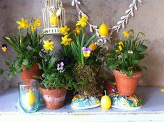Inspirere deg til lagspill med naturen Organic Gardening, Planter Pots, Easter, Easter Activities, Organic Farming
