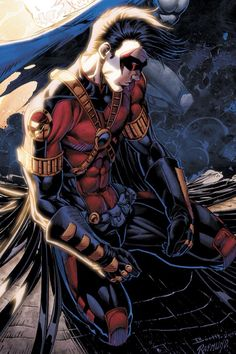 Red Robin/Teen Titans