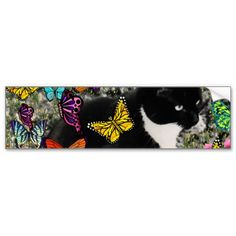 Freckles in Butterflies - Tuxedo Kitty Bumper Stickers #sold going to North Carolina!!