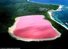 Ce lac, épais, est le foyer de tonnes d'algues. C'est un grand lagon de 3 km², qui se nomme Retba, et qui est situé au Sénégal. Sa couleur est due à une cyanobactérie, organisme microscopique qui fabrique, surtout par temps de vent sec, un pigment rouge pour résister à la concentration de sel.