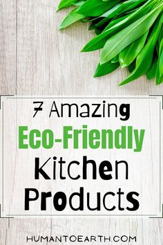What are some decently priced, non-toxic, and eco-friendly kitchen products? Here are 7 of my favorites for creating a sustainable home! Minimalist Lifestyle, Eco Friendly House, Kitchen Products, Sustainable Living, Sustainability, Herbs, Earth, Zero Waste, Amazing
