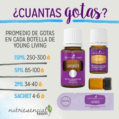 Cuantas gotas Yl Essential Oils, Yl Oils, Young Living Essential Oils, Young Living Panaway, Young Living Oils, Young Living Lavender, Home Health, Forever Young, Soap Making