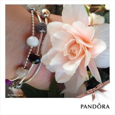 Pandora Essence Collection Pandora Polska Facebook