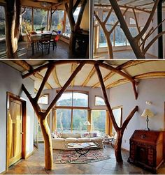 I love the use of natural trees in this house!