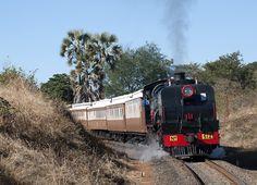 South African Railways, Choo Choo Train, Steam Engine, Steam Locomotive, Train Tracks, Zimbabwe, Public Transport, Birth, Age