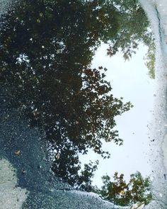 Un giorno cominciò a piovere e non la smise più per quattro mesi. Siamo stati sotto le piogge di tutti i tipi: da quella fina che ti punge a quella grossa grossa che ti ammacca; la pioggia che scorreva giù di lato e a volte anche la pioggia che veniva dritta dritta da sotto! Accidenti pioveva anche di notte…