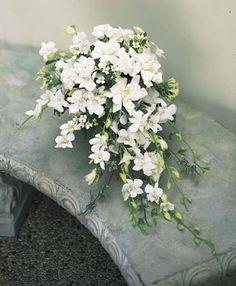 BEAUTIFUL- white dendrobium orchids, gardenias, white bouvardia, white mini carnations and variegated ivy