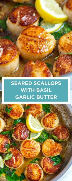 How to make restaurant-worthy scallops at home. These pan seared scallops with g.How to make restaurant-worthy scallops at home. These pan seared scallops with garlic basil butter take less than 10 minutes and taste incredible! Great Recipes, Favorite Recipes, Healthy Recipes, Recipes Dinner, Healthy Scallop Recipes, Garlic Recipes, Basil Recipes, Baked Scallops Recipe Healthy, Recipes For Fish