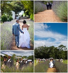 Lovely garden wedding venue in the Cape Town Wedding Venues, Boulder Beach, Wedding Vows, Wedding Themes, Garden Wedding, Getting Married, Weddings, Top, Photography