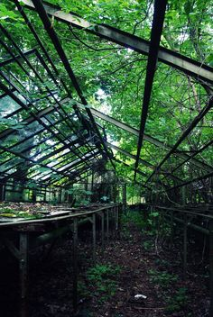 an old greenhouse.  Lost Place Urban Exploration Berlin https://www.facebook.com/ForgottenHideaways Copyright by ForgottenHideaways