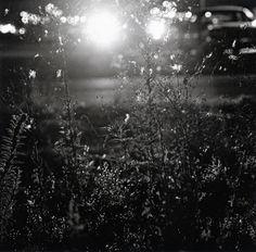 Robert Adams- Summer Nights, Walking